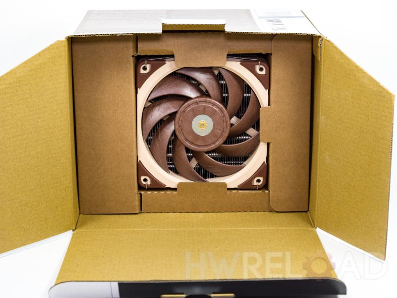 Honeyview-P5050983.jpg