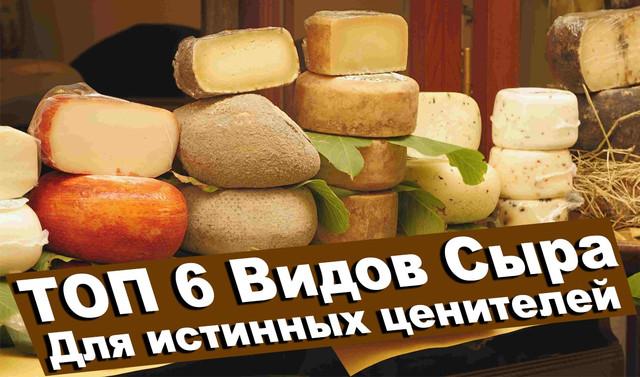 top-6-vidov-sira-dlia-cenitelei