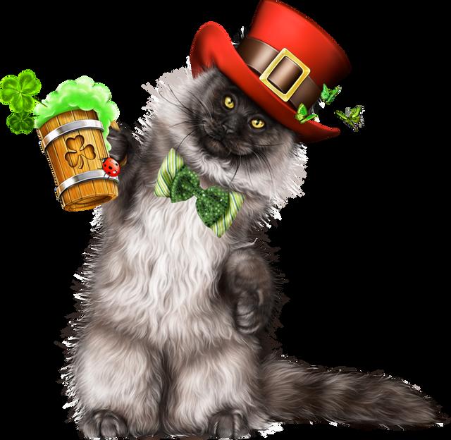 Leprechaun-Cat-With-Beer-43.png