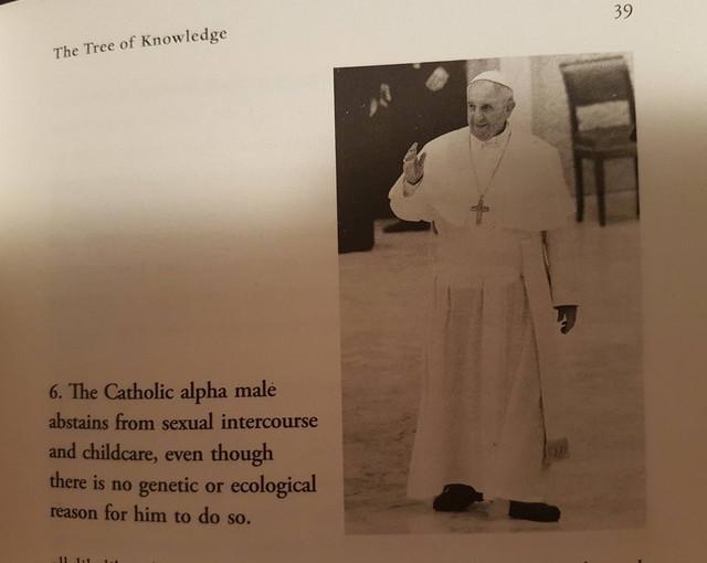 catholic-alpha