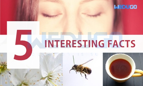 5 Interesting new facts in our life