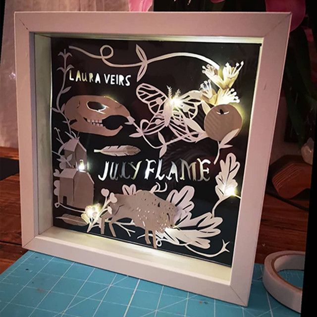 LAURA VEIRS LAYERED LIGHT BOX