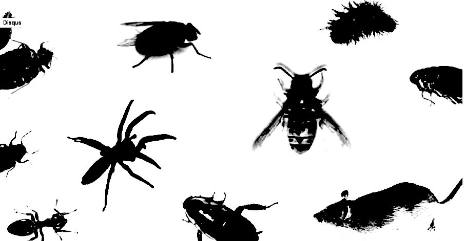 photo-of-pests