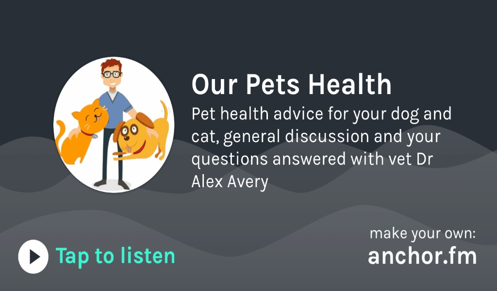 Andrews Kurth's Pet Health Concerns