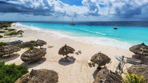 Karibia Kedatangan Kapal Pesiar Pembawa Virus Berbahaya