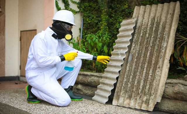 Asbestos-Watch-Removal