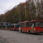 IMG-7536