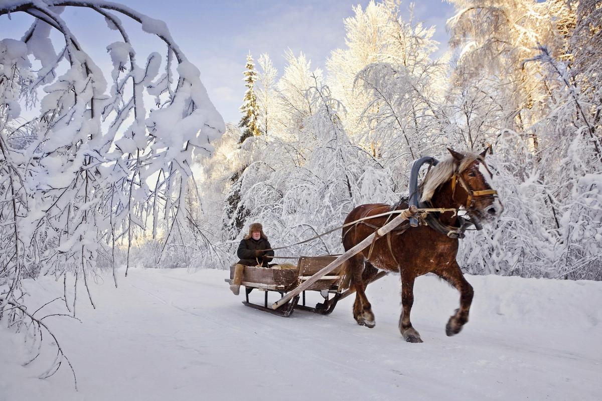 «Русские сказки». Фотограф Франк Херфорт 33