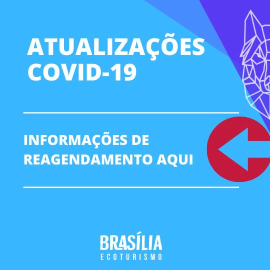 atualiza-es-covid-19