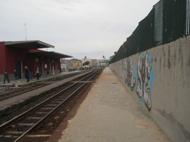 IMG-0611