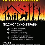 С приходом весеннего тепла сотрудники МЧС России сталкиваются с одной и той же проблемой — палами сухой травы. Считается, что сжигание прошлогодней травы ускоряет рост молодой. Но сухая трава не является преградой для молодой поросли