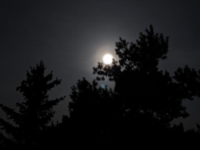 PXL-20210328-203712435-NIGHT