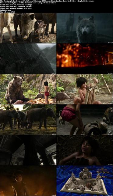The-Jungle-Book-2016-Worldfree4u-Wiki-720p-BRRip-x264-ESub-Dual-Audio-Hindi-DD-5-1-English-DD-5-1