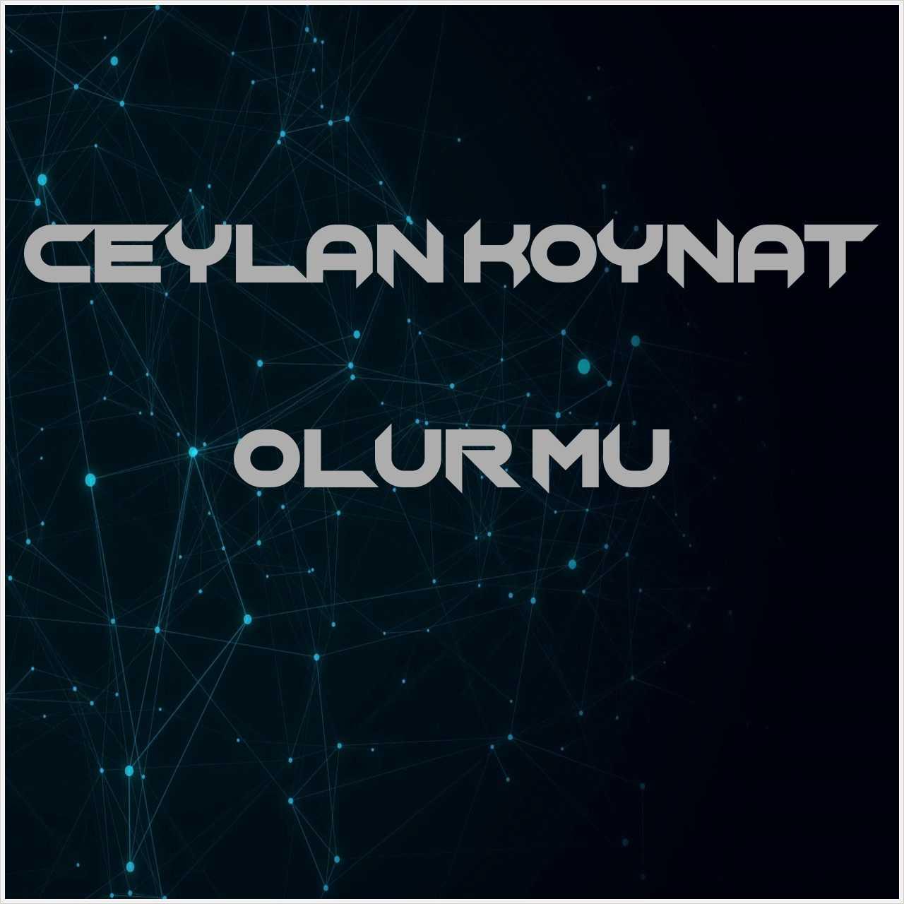دانلود آهنگ جدید Ceylan Koynat به نام Olur mu