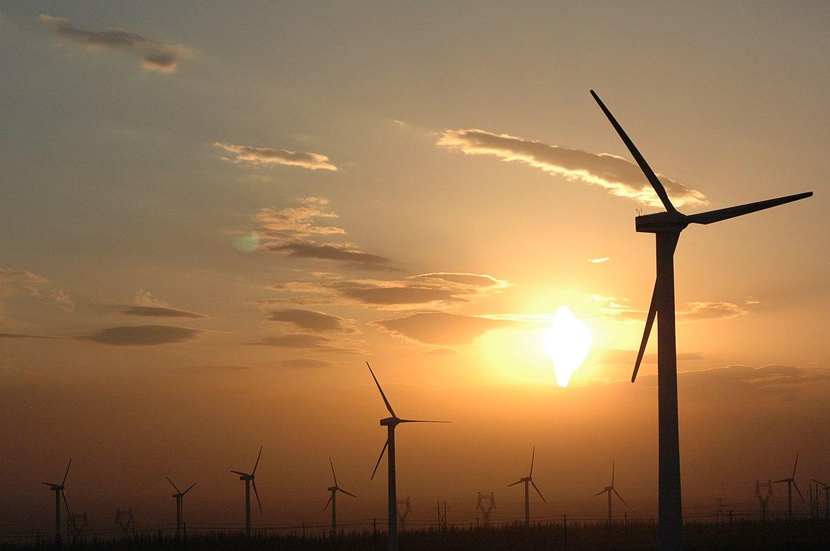 100MW wind power unit in Kutch commissioned by Adani Green Energy Ltd
