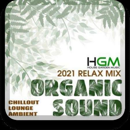 Organic Sound (2021) (MP3|320)