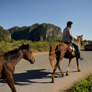 22160930-7785767-A-car-crosses-paths-with-a-man-riding-his-horse-while-holding-an-a-45-1576170216510