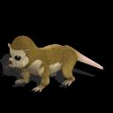 Pack de criaturas reales Monito-del-monte