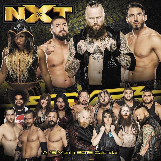 WWE NXT 2020 03 25 720p HDTV x264 950MB Download