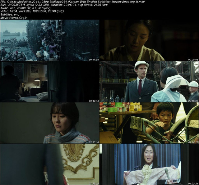 Ode-to-My-Father-2014-1080p-Blu-Ray-x264-Korean-With-English-Subtitles-Movies-Verse-org-in