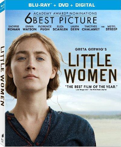 Little Women (2019) Hindi Dual 480p x264 400MB Esubs DL