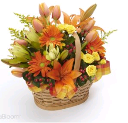 North-St-Paul-Florist