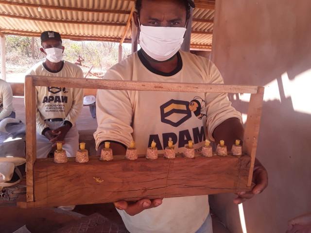 Treinamentos aprimoram trabalho de apicultores atendidos pelo Programa ATeG em Minas Gerais - SENAR MINAS
