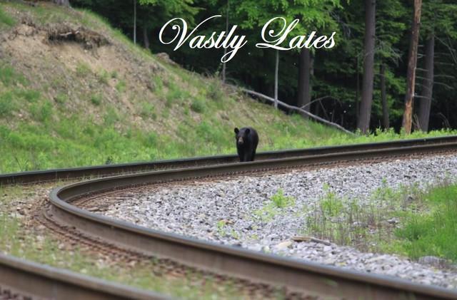 Vastly-Lates