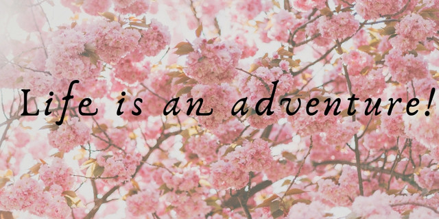 Life-is-an-adeventure-1