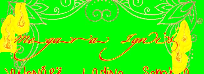 https://i.ibb.co/3BKBwFn/Megara-Ignis-fire.png