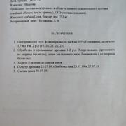 Москва, Сафира, сука 13.07.2017 г.р. X45f-Oj-UOe-M4