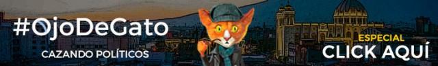banner-publicidad-ojo-de-gato-1