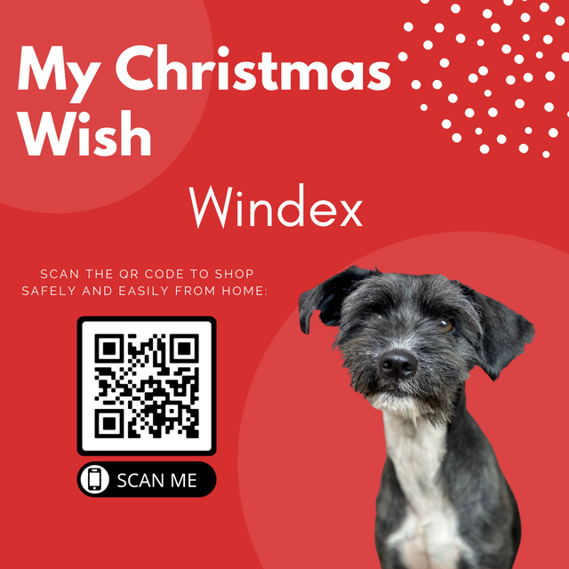 Animal-Services-2020-Angel-Tree-055.png