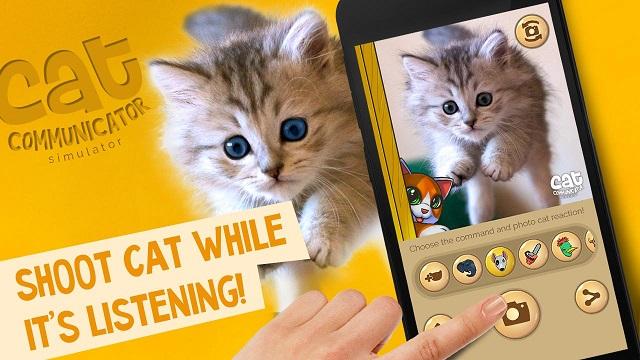 Aplikasi Penerjemah Bahasa Kucing, Berikut Info Lengkapnya