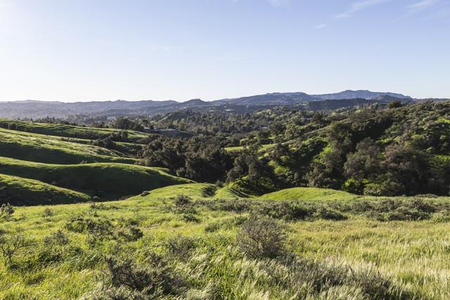 Woodland-Hills