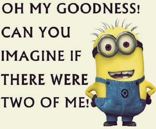 225493-Can-You-Imagine-If-There-Were-Two-Of-Me-Minion-Quote