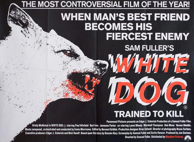 white-dog-md-web.jpg