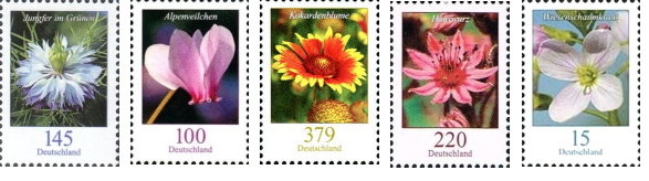 Germany flowers 2018