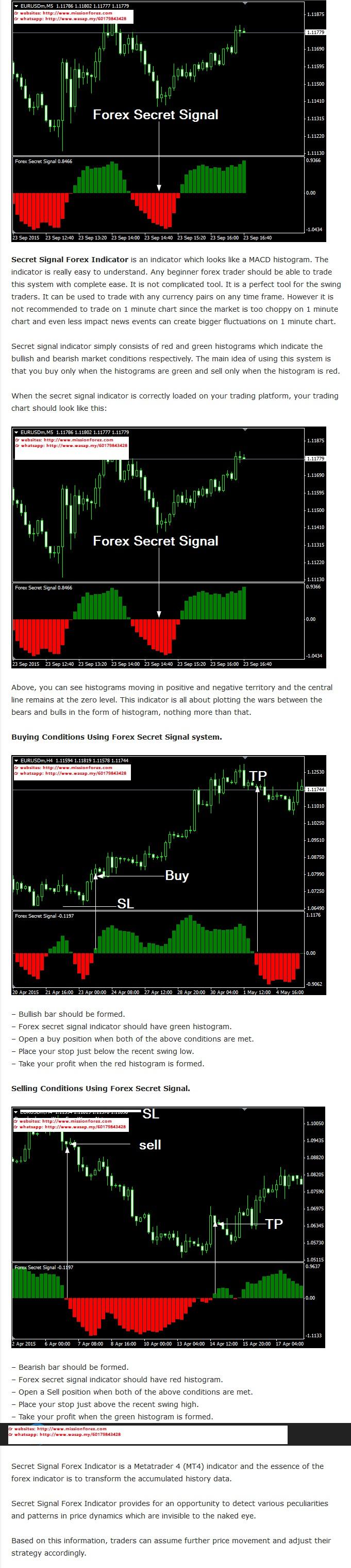 Forex Secret Signal(Enjoy Free BONUS Sure Fire Hedging Strategy, EASY Trading Method)