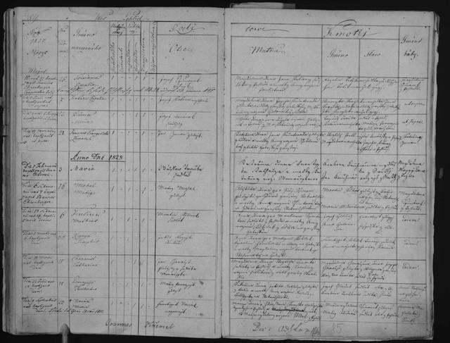 CZEC0004-D-Matriky-Church-books-Havl-k-v-Brod-2564-1826-1864-00087