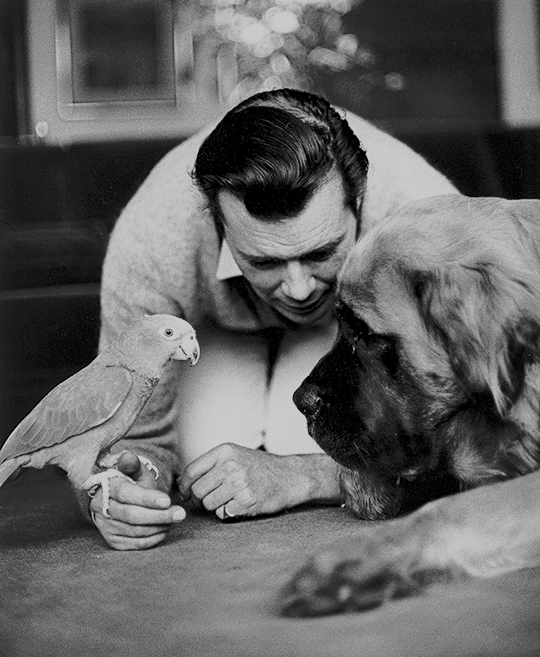 Dirk-Bogarde-at-home-with-his-pets-1965