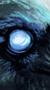 El Cuervo // Afiliación de élite 50x90