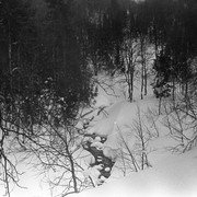 Dyatlov pass 1959 search 52