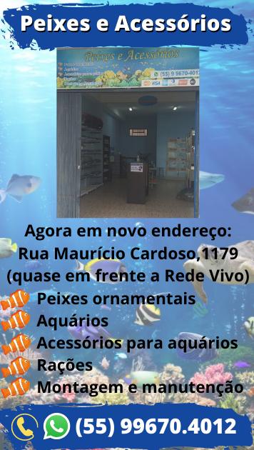 Peixes-e-Acess-rios