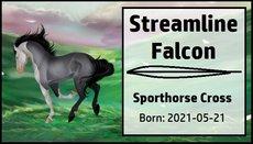 Streamline_Falcon.jpg