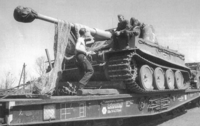 Tiger-rail-4