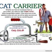 [Image: Katten-kradser.jpg]