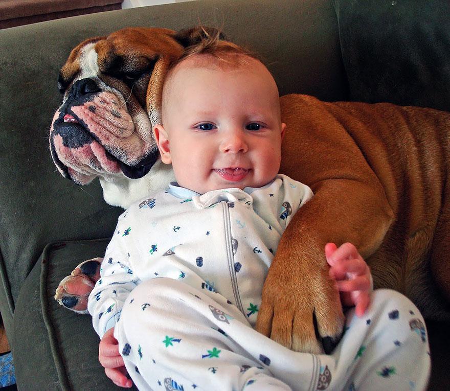 Когда собаки большие, а дети маленькие - 44 потрясающие фотографии - 25