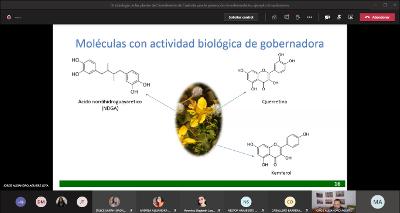 Conferencia-etnobiologi-a-de-las-plantas-del-semidesierto-de-Coahuila-para-la-Prevencio-n-de-Enferme