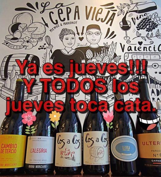 Catas de vinos en Valencia